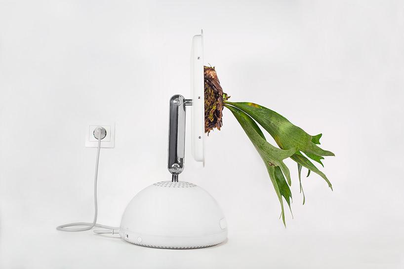 plant-your-mac-mr.-plant-christophe-guinet-t4agency15