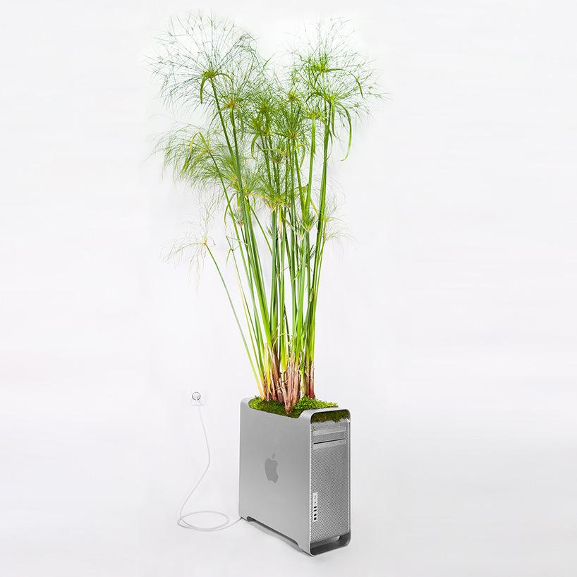 plant-your-mac-mr.-plant-christophe-guinet-t4agency16