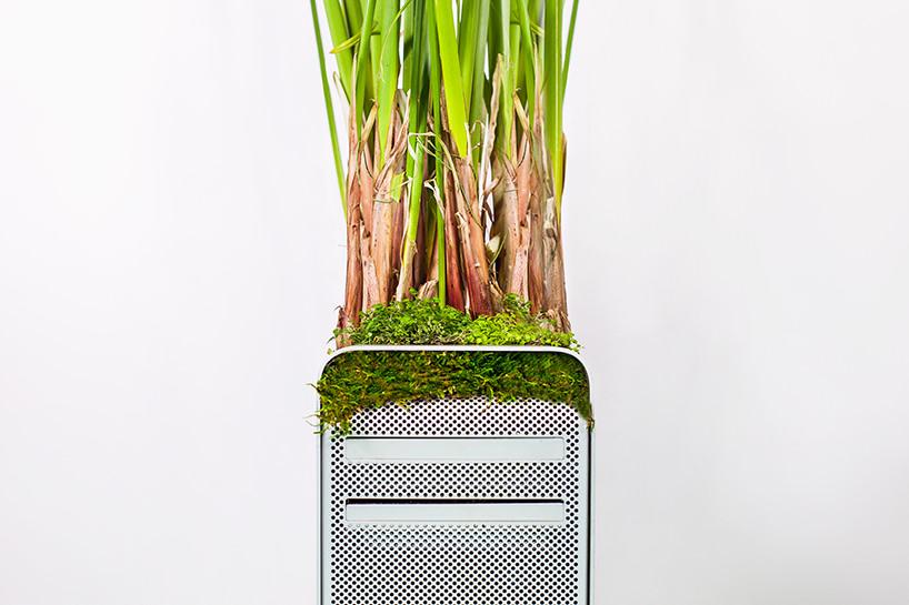 plant-your-mac-mr.-plant-christophe-guinet-t4agency17